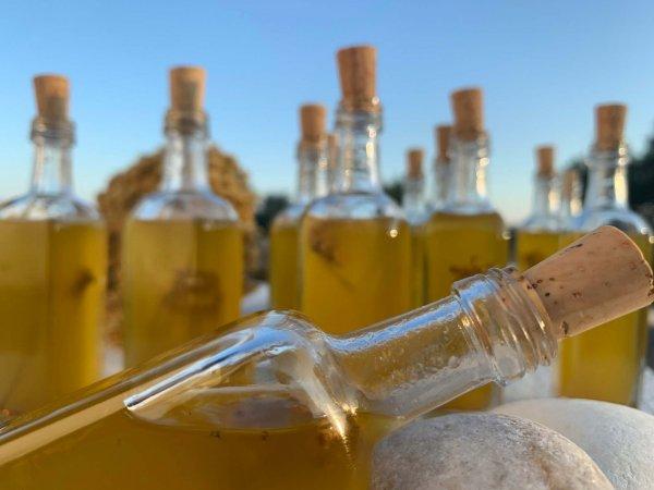 Hélichryse italienne - Elixirs de Sagesse