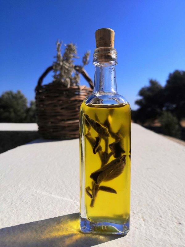 Elixir de Sauge - Elixirs de Sagesse