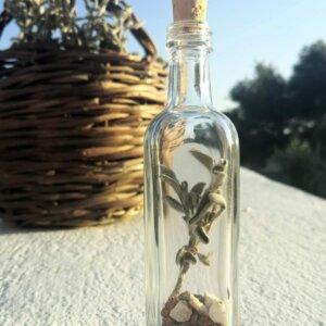 Flacon de Sauge - protection de l'habitat - Elixirs de Sagesse