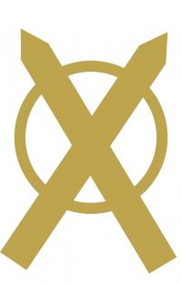 Oracle des Nordiens - Le Guerrier - Elixirs de sagesse