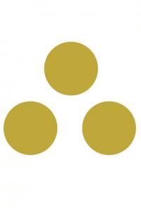 Oracle des Nordiens - Les 3 Lunes - Elixirs de sagesse